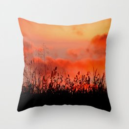 Rainbow Sundown Throw Pillow