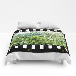 Sunny Green Scenery Comforters