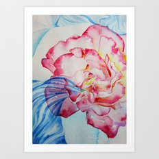 Rose red and blue Art Print