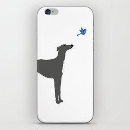 Whippet Dog iPhone Skin