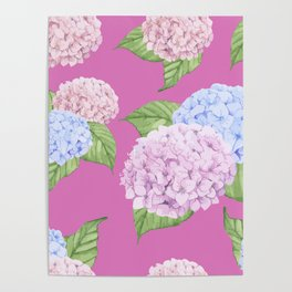 Pink Hydrangeas Poster