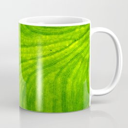 Leaf Paths Coffee Mug