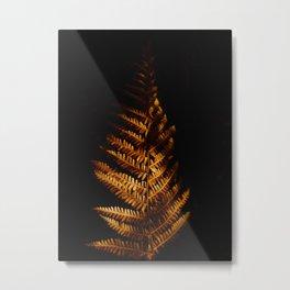 Minimalist Brown Autumn Fern Leaf Black Background Foliage Photography Metal Print