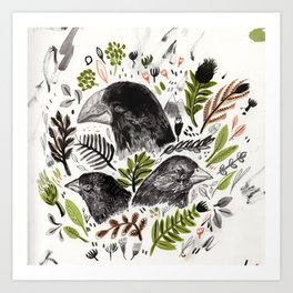 DARWIN FINCHES Art Print