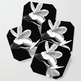 White Flowers Black Background Coaster