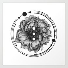 Elliptical II Art Print