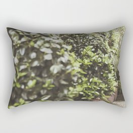 Charleston Garden Goddess Rectangular Pillow