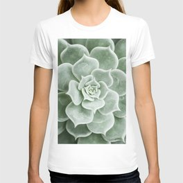 Succulent lover close up view T-shirt