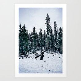 Dusting of Snow Art Print