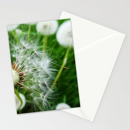 Dandelions - Nature Photography Stationery Cards