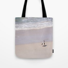 Lone African Penguin on Cape Town beach Tote Bag