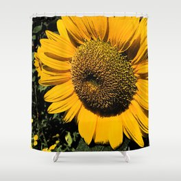 Sunflower Fresco Shower Curtain