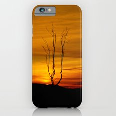 Lone tree sunset iPhone 6s Slim Case