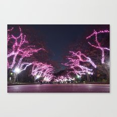 Ueno Park - Tokyo Canvas Print