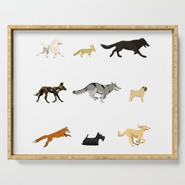 Dogs & Wild Dogs Serving Tray