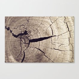 Cracks in Time Canvas Print