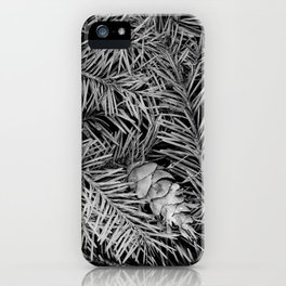 Boxed Organics - Pine Branches iPhone Case