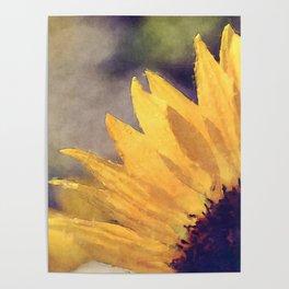 Another sunflower - Flower Flowers Summer Poster