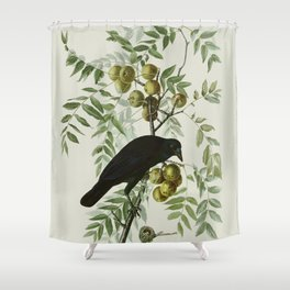Vintage Crow Illustration Shower Curtain