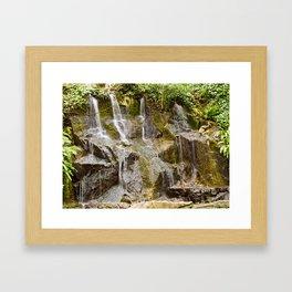 Fern Garden Waterfall Framed Art Print