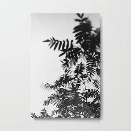 Leaf Study #8 Metal Print