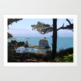 the lost coast Art Print