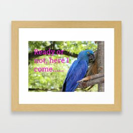 Ready Or Not, Here I Come... Framed Art Print