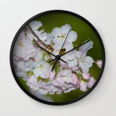 Cherry Blossoms and Bee Wall Clock