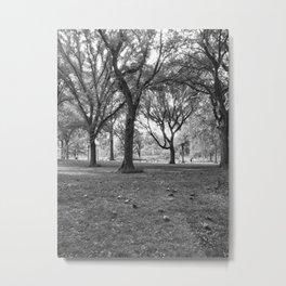 Verde (B&W) Metal Print