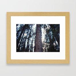 Johnston Canyon Framed Art Print