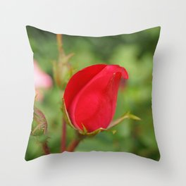 Soft Red Rosebud Throw Pillow