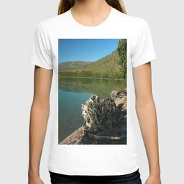 Driftwood On Lakeshore T-shirt