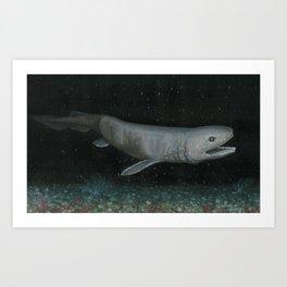 Frilled Shark Art Print