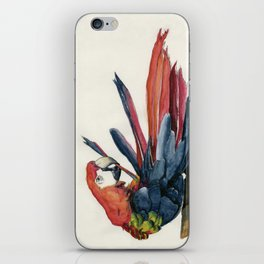 Parrot Grooming iPhone Skin