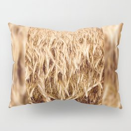 golden cereal grain ears on field Pillow Sham