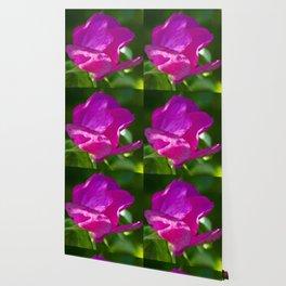 Unfold Wallpaper