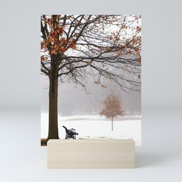 A Place for Reflection Mini Art Print