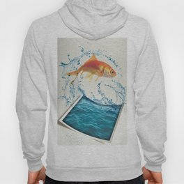 Two Dimensional Freedom Hoody