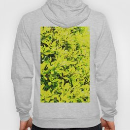Holly Sunshine to Brighten Up Your Brand New Day Hoody