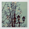 Winter Lights by ellemoss