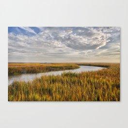 Johnson Creek HDR 01 Canvas Print