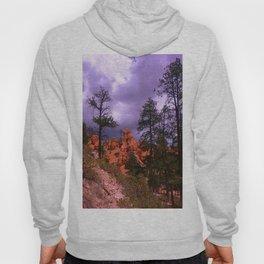 Bryce Canyon LH4 Hoody