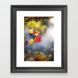 Autumn Soliloquy Framed Art Print