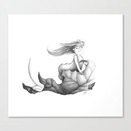 nimbly in flight Canvas Print