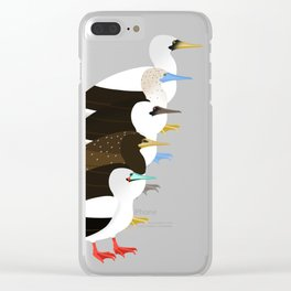 Booby Birds Clear iPhone Case