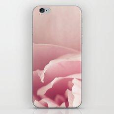 Peony Blush iPhone & iPod Skin