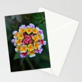 Lantana I Stationery Cards