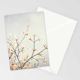 Grey Peach Floral Photography, Neutral Gray Nature Cream Blossoms, Apricot Tree Branches Stationery Cards