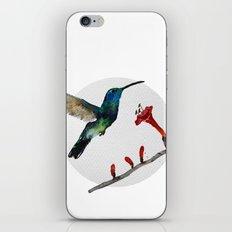 Messenger 007  iPhone & iPod Skin