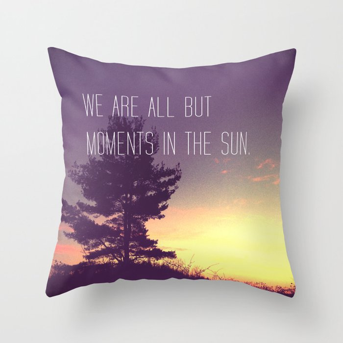 We Are All But Moments in the Sun Throw Pillow